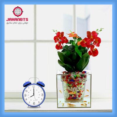 قیمت خرید اینترنتی گلدان آکواریوم فانتزی 7Green