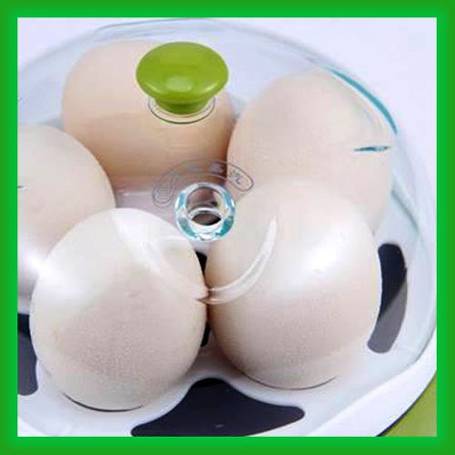 قیمت خرید پستی دستگاه تابه و تخم مرغ پز برقی چند کاره Xiongzi