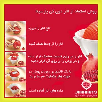 قیمت و خرید پستی انار دون کن پارسینا Parsina